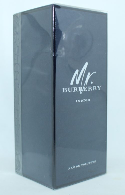 Burberry Mr. Burberry Indigo 100 ml Eau de Toilette